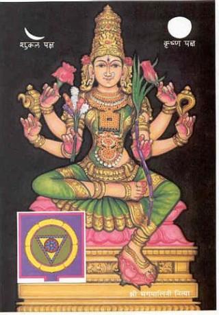 2Bhagamalini